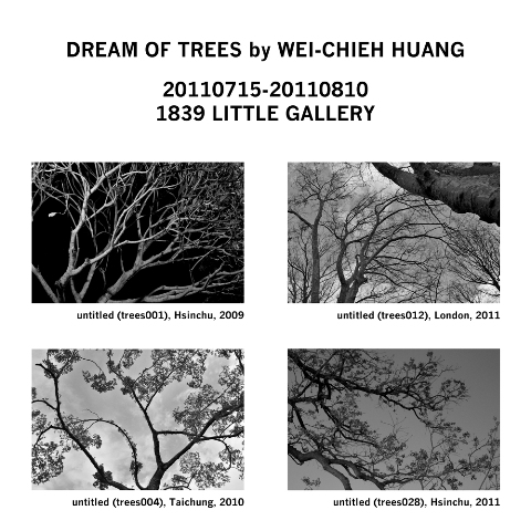Dream of trees by Wei-Chieh Huang