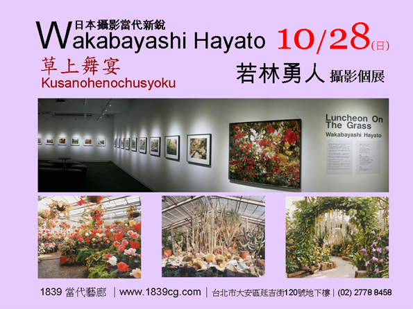Wakabayashi Hayato Solo Exhibition